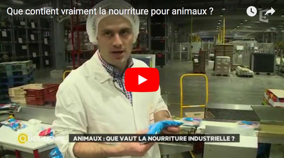 La Quotidienne (France 5) : Que contient vraiment la nourriture pour animaux ?